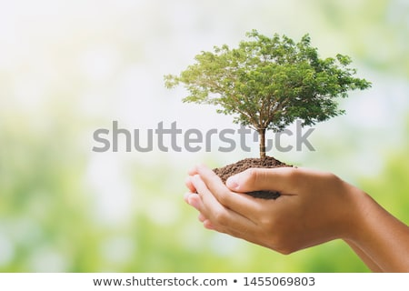 nature human stock photo © lightsource
