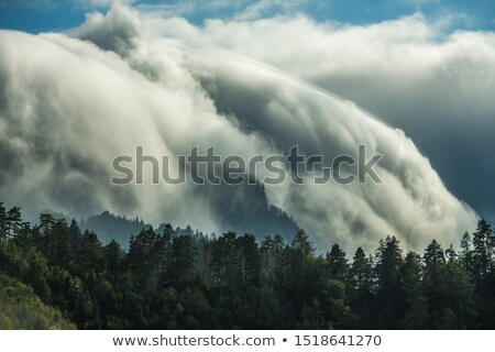 Weer illustratie zon achtergrond regen winter Stockfoto © bluering