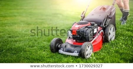 Grama vermelho máquina grama verde Foto stock © simply