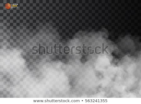 Fog or smoke isolated transparent special effect. White vector cloudiness, mist or smog background.  Stock photo © Iaroslava