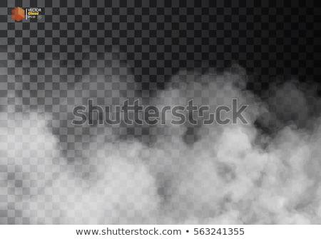 Köd füst izolált átlátszó különleges hatás Stock fotó © Iaroslava
