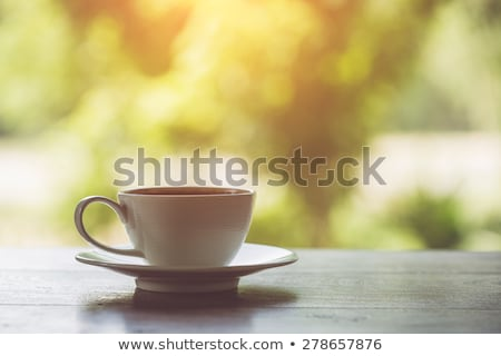 morning bench stock photo © fisher