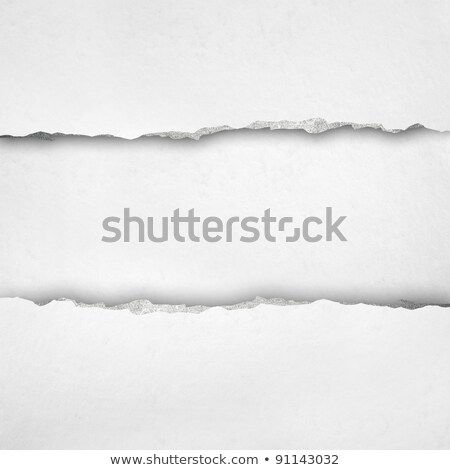 Blank lined note book page with torn edge Stock photo © pakete