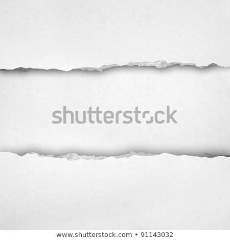 空っぽ · ノートブック · 引き裂か · エッジ · 白紙 - ストックフォト © pakete