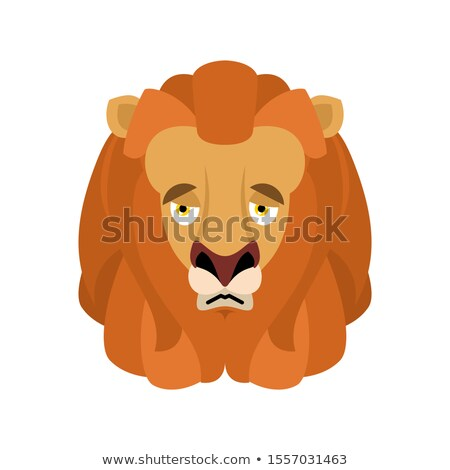Lion sad emoji face avatar. Wild animal sorrowful emotions. Beas Stock photo © popaukropa