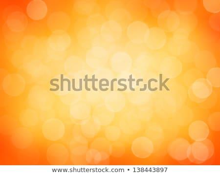aislado · dorado · llamarada · transparente · vector · luz - foto stock © oblachko