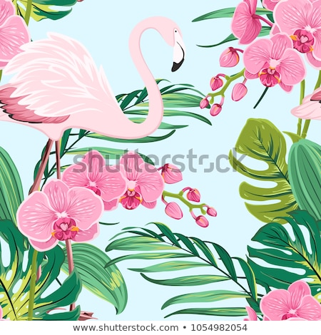 Tropical orchid leave pattern stock photo © PurpleBird