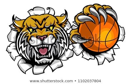 Lion Holding Basketball Ball Breaking Background Stock photo © Krisdog