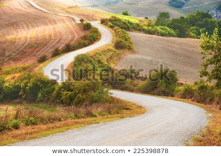 italy tuscany countryside; farm land and country road to the vil Stock photo © Konstanttin