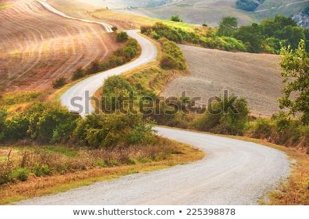 イタリア トスカーナ ファーム 土地 田舎道 ストックフォト © Konstanttin