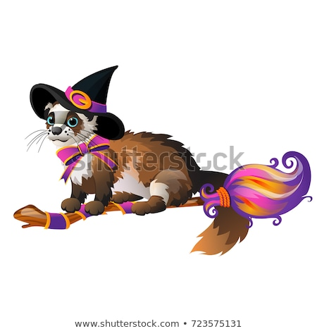 Cute fluffy ferret in the black witch hat flying on a broom isolated on white background. Sketch for Stock photo © Lady-Luck