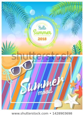 Olá verão verão humor brilhante cartões Foto stock © robuart