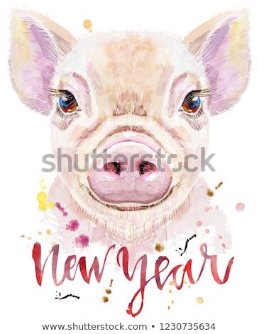 Wasserfarbe Porträt Schwein Inschrift Neujahr cute Stock foto © Natalia_1947