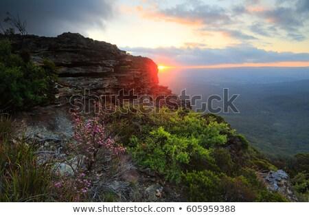 Narrowneck Blue Mountains Australia scene Stock photo © lovleah
