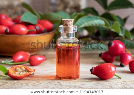 A bottle of rosehip seed oil with fresh rosehips Stock photo © madeleine_steinbach