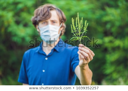 Young man in a medical mask because of an allergy to ragweed Stock photo © galitskaya