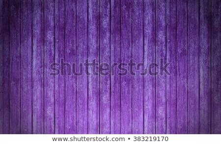 Velho roxo porta textura do grunge textura Foto stock © marylooo