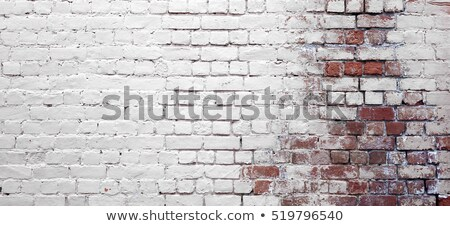 Brickwall with cracks on white background Stock photo © colematt