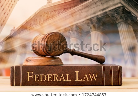 A law book with a gavel  - Federal Law Stock photo © Zerbor