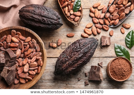 Raw cacao beans and pod Stock photo © boggy