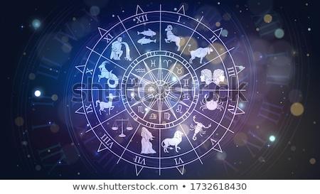 Stock fotó: Vector Astrological Fortune Wheel