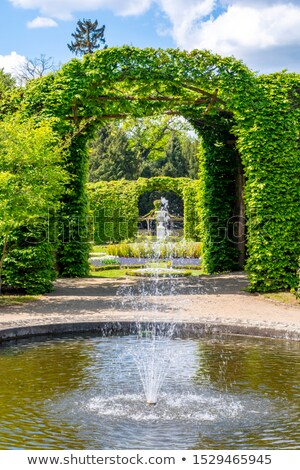 Sanssouci palace,Potsdam, Germany Stock photo © borisb17