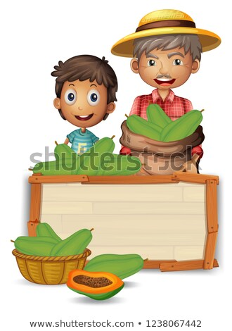 Farmer with papaya on wooden board Stock photo © colematt