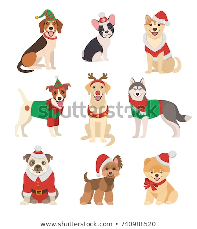 Cute · Cartoon · собаки · щенки · набор · иллюстрация - Сток-фото © izakowski