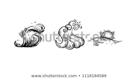 vintage surfing graphics logos set for web design or print surfer badges templates surf emblems s stock photo © jeksongraphics