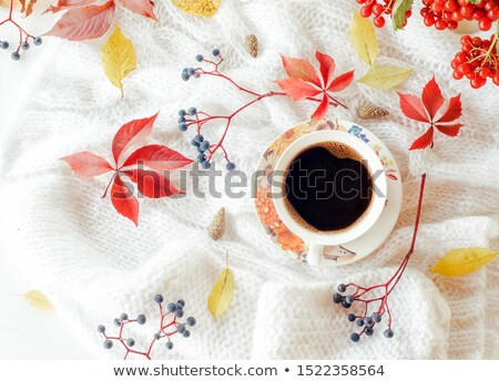 Autumn background with cup of tea, plaid and leaves Stock photo © furmanphoto
