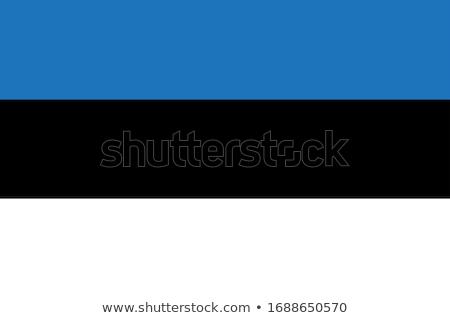 Észtország zászló fehér keret felirat utazás Stock fotó © butenkow