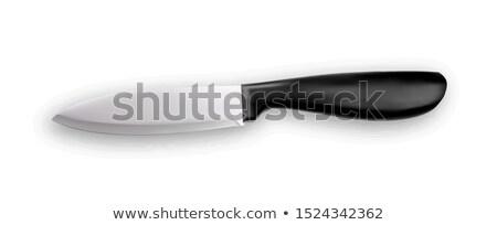 Faca metálico utensílios de cozinha vetor aço luz Foto stock © pikepicture