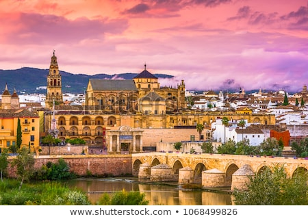 Moskee kathedraal Spanje rivier cultuur Stockfoto © borisb17