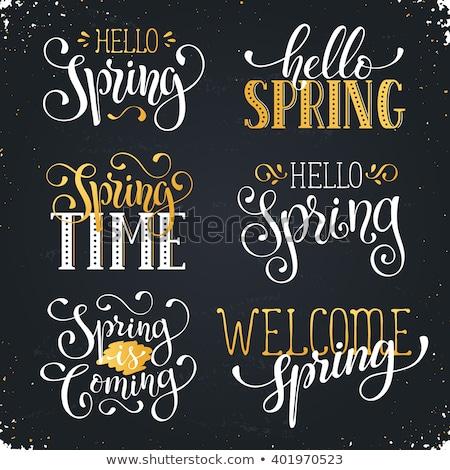 Tavasz idő szöveg vektor kifejezés poszter Stock fotó © masay256