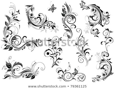 Floral ornements décoration tourbillon modèles Photo stock © SArts