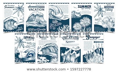 Wave, Palm Trees And Seaweeds Banner Set Vector Stock photo © pikepicture
