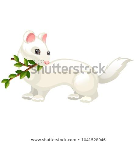 Ramoscello foglie isolato bianco vettore cartoon Foto d'archivio © Lady-Luck