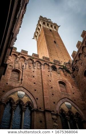Windows · Toscana · toscana · flores · rojas · edad · pared - foto stock © wjarek