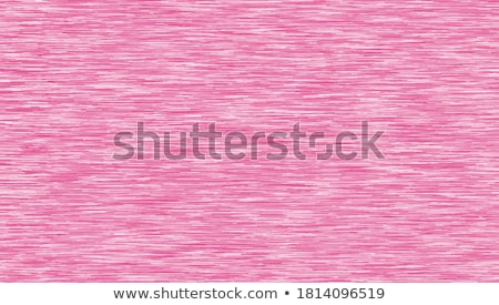 pink heather Stock photo © smithore