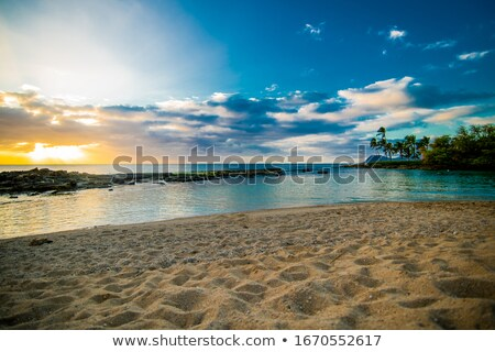 Panorama isola panoramica shot città shore Foto d'archivio © pixelsnap