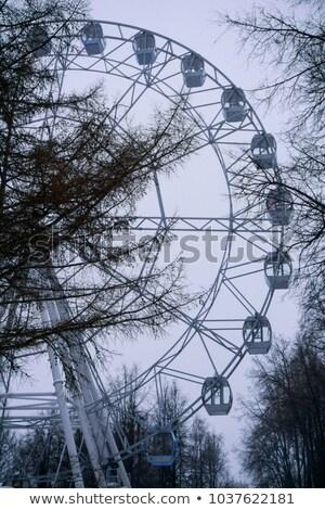 Ferris wheel fragment through the Trees Stock photo © ultrapro