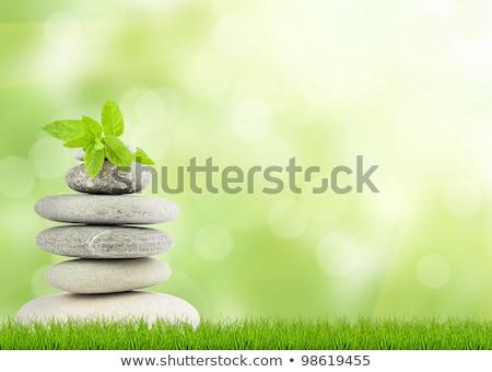 Stock photo: Medicine Landscape