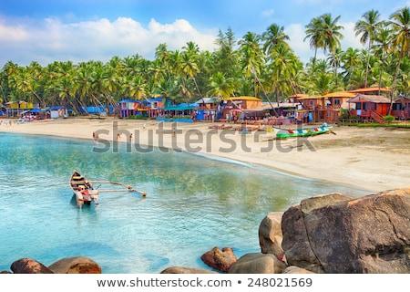 plaj · Hindistan · güney · gökyüzü · ağaç - stok fotoğraf © thp
