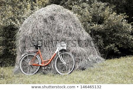 Bicikli szénaboglya vidéki táj fű terv szépség Stock fotó © m_pavlov