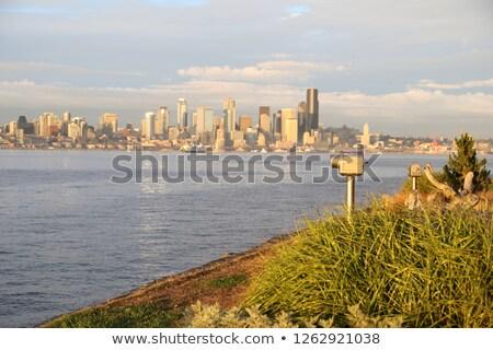 seatle skyline Stock photo © compuinfoto