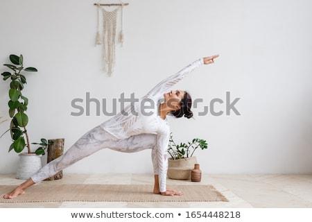 nyújtás · káprázatos · fiatal · karcsú · fitnessz · lány - stock fotó © lithian