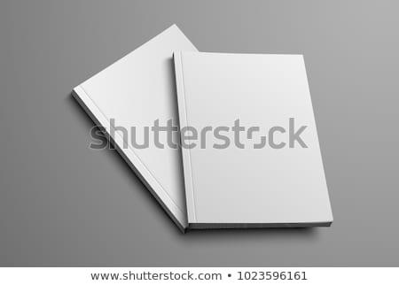 Deux livre blanche couvrir bureau Photo stock © hanusst