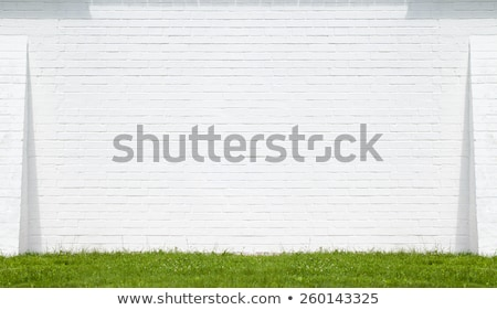 White concrete wall with grass Stock photo © smuay