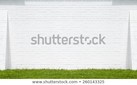 branco · concreto · parede · grama · sombra · casa - foto stock © smuay