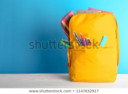 azul · escolas · mochila · artigos · de · papelaria · isolado · branco - foto stock © neirfy